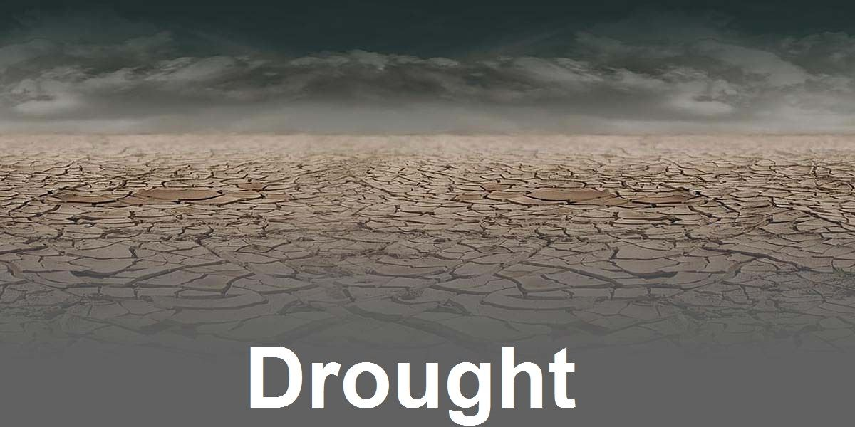 Drought Image Link