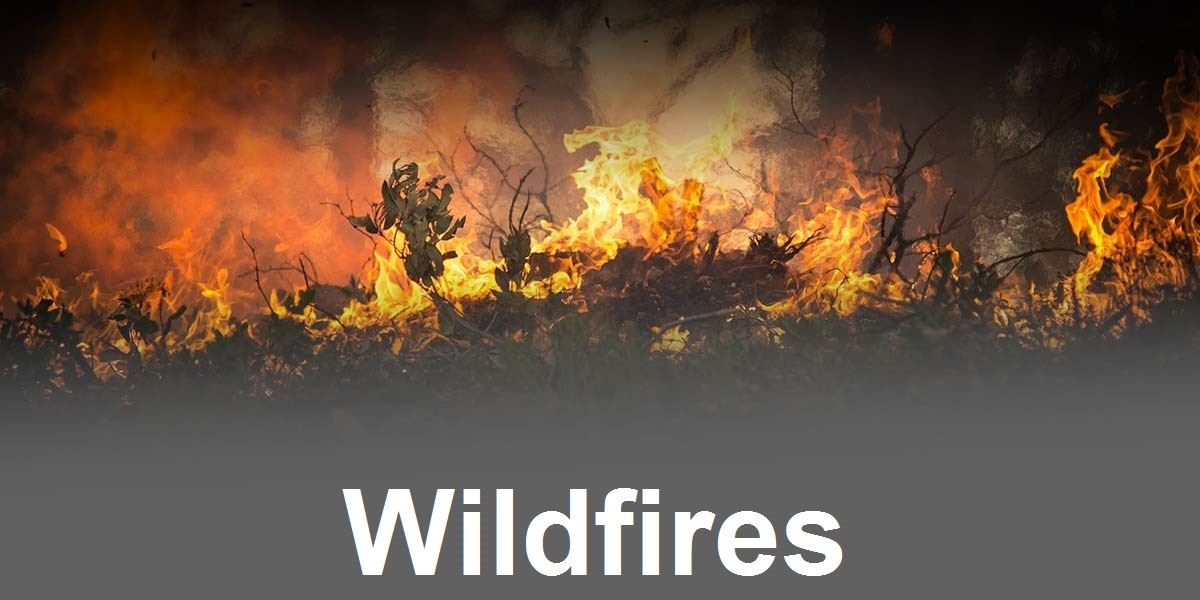 Wildfires Image Link